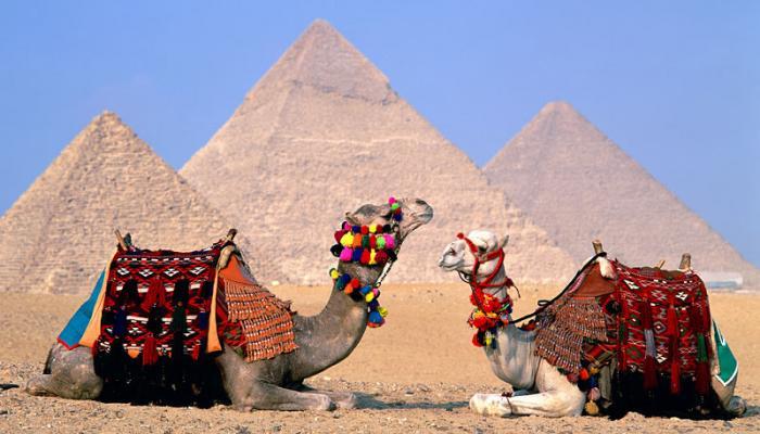 مصر.. طفرة بعدد السياح لـ 5 ملايين خلال 6 أشهر